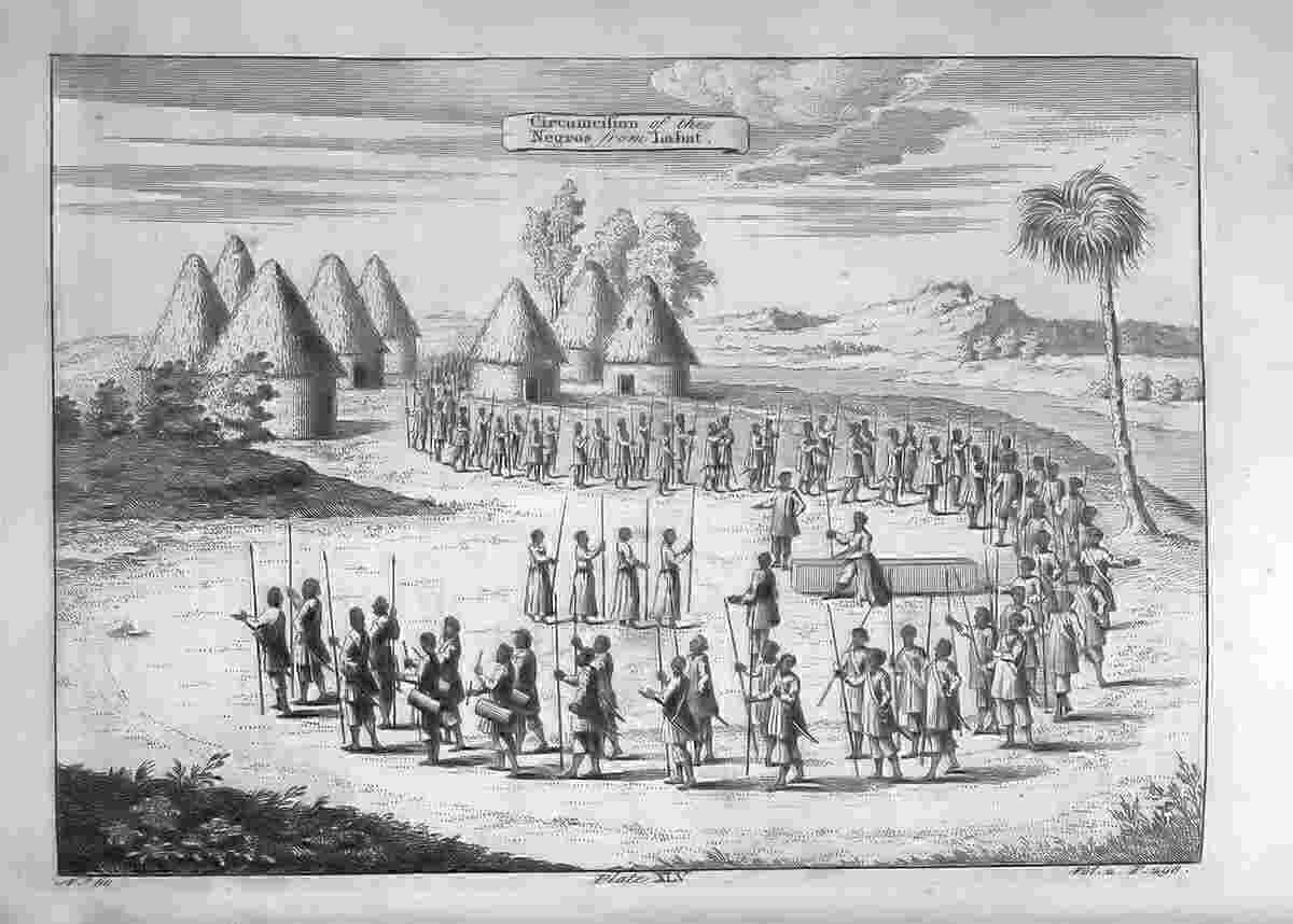 west african slave trade African american history slavery antebellum period (1820–1860) business  and industry colonial history (ca 1560–1763).